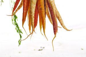 carrots-1149173_640
