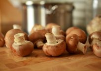 mushrooms-756406_640