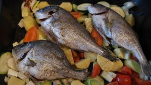 sea-bream-261150_640