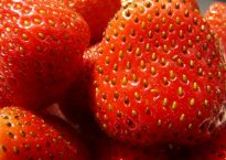 strawberries-58195_640