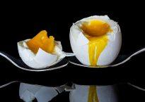 egg-2161877_960_720