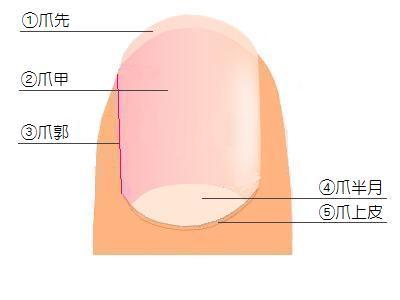 tsume01
