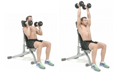 neutral-grip-seated-shoulder-press